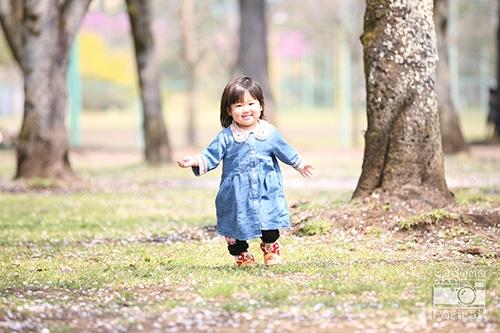 桜と子供の写真